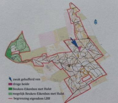 Habitat types in het Luntersche Buurtbosch op basis van Natura 2000 regelgeving. De witte gebieden zijn gemengd bos.