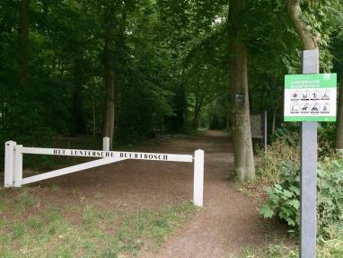 Wandeling met gids in het Luntersche Buurtbosch @ Start bij de Eendjesvijver