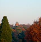 herfst-2012-8-rien